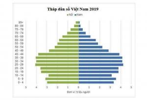 Cách vẽ biểu đồ tháp dân số với Excel
