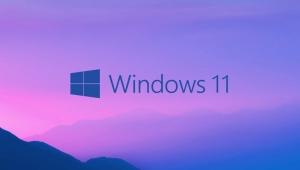 Link download bản Windows 11 Consumer Dev (21996.1)